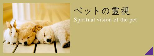ペットの霊視